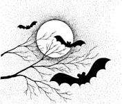 bats and the moon
